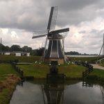 Farm Stay em agricultura e animais Netherlands