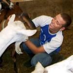 VidaEdu Farm stay na Bélgica