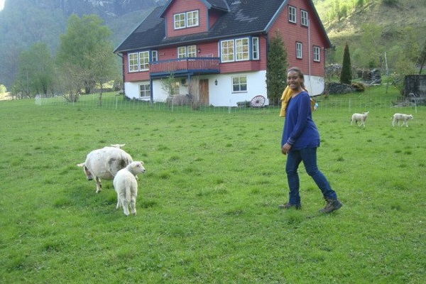 Vidaedu estágios em quintas na noruega