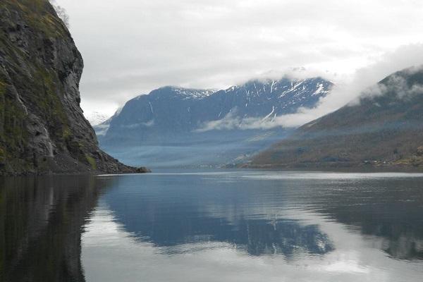 VidaEdu estágio em agricultura e animais na Noruega