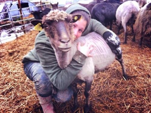 Vidaedu Estágios em quintas de animais na Norway