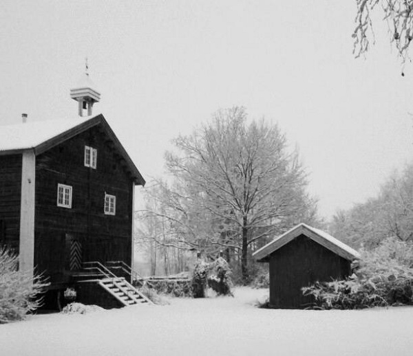 VidaEdu Experiência profissional remunerada na Noruega
