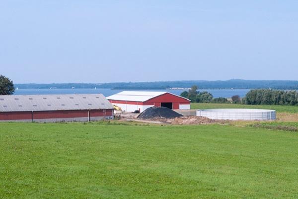vidaedu estagio agricultura e animais quintas dinamarca