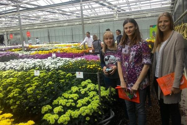 vidaedu estagios estufas flores estudantes na holanda