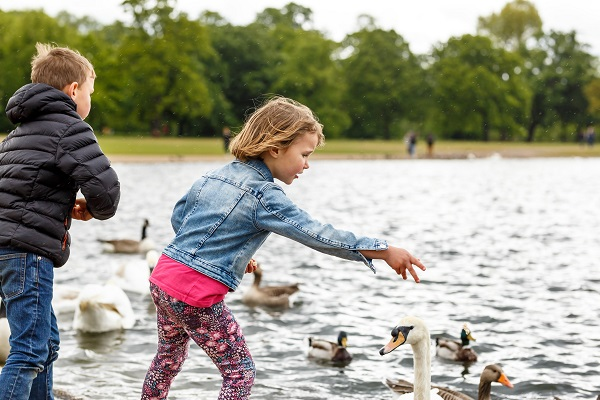 vidaedu au pair cuidar criancas intercambio england reino unido