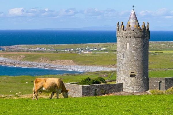 vidaedu estagios em quintas e casas de turismo rural na irlanda