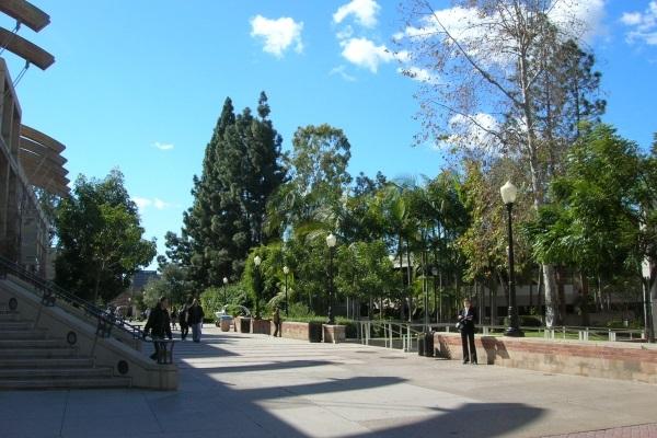 vidaedu curso ingles Summer Camp UCLA Campus eua los angeles