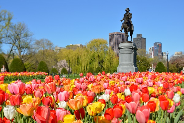 vidaedu-estagios-cursos-no-mundo-emprego-boston-estados-unidos