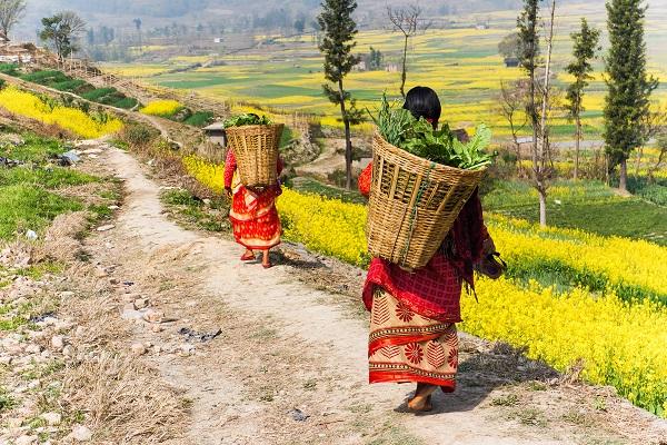 vidaedu voluntariado internacional mulheres tibet nepal