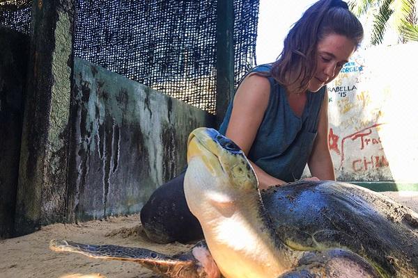 vidaedu voluntariado internacional projet turtle sri lanka