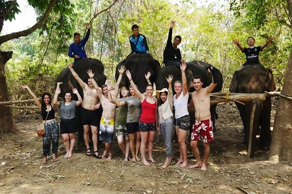 vidaedu voluntarios elefantes mahouts tailandia