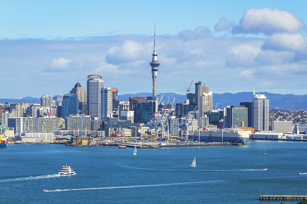 vidaedu estagios salario minimo auckland nova zelandia