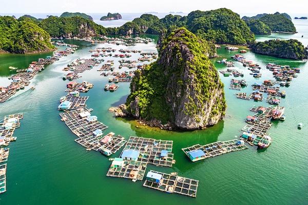 vidaedu viajar gap year vietname asia
