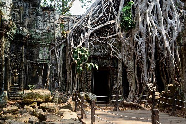 vidaedu voluntariado cambodja siem reap angkor wat