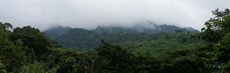 Projeto Conservação Ambiental na Tanzânia