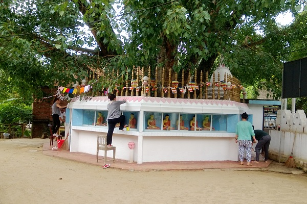 vidaedu volunteer international reconstrucao templos kandy sri lanka