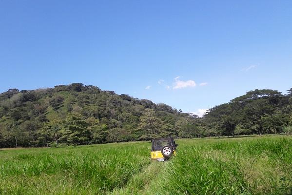 vidaedu voluntariado internacional agricultura esparza costa rica