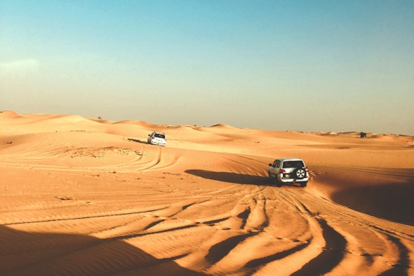 vidaedu internship emirados arabes unidos abu daby