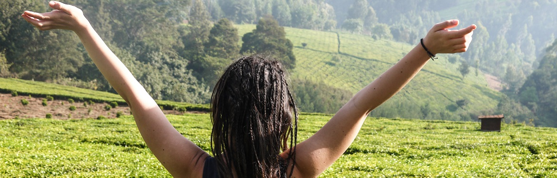 Projeto Conservação Ambiental no Quénia