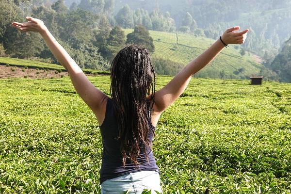 vidaedu voluntariado protecao ambiente quenia