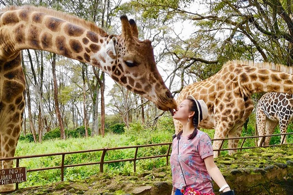 vidaedu voluntariado viajar quenia kiss giraffe